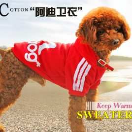Doggy Sports Winter Coat Hoodie